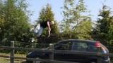 Vidéo Damien Walters Parkour 2011