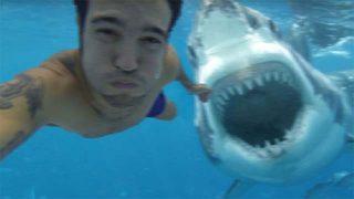 Top 25 des selfies les plus extrêmes